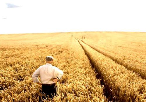 NUOVI MODELLI DI AGRICOLTURA SOSTENIBILE TRA TRADIZIONE E INNOVAZIONE